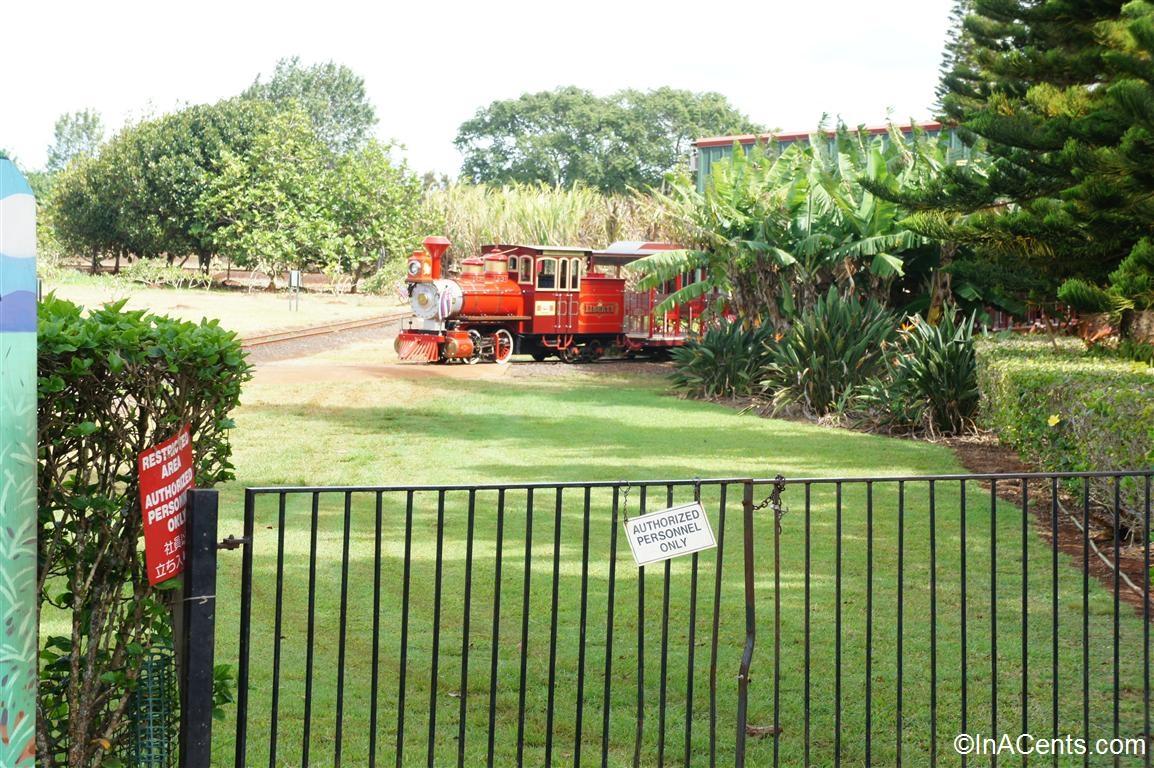 Touring the Dole Plantation via the Pineapple Express ...