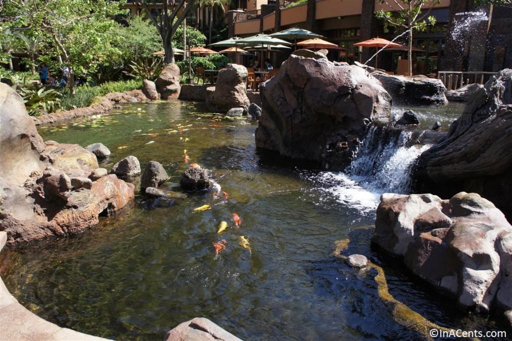 120625 Disney's Aulani Koi Pond 3