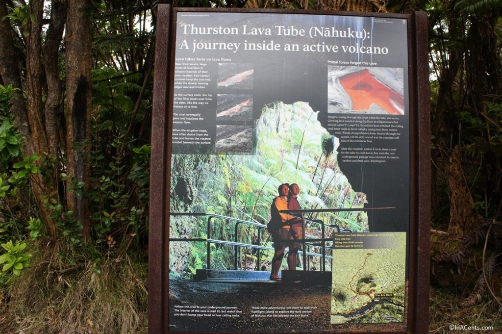 120619 Thurston Lava Tube Hawaii (1)