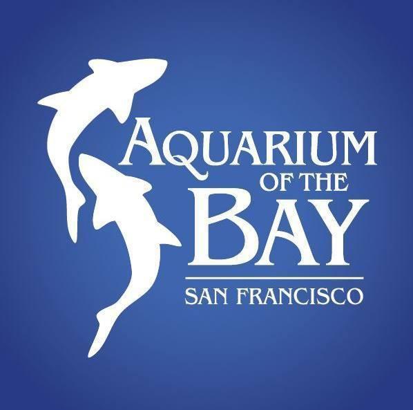 Review: Aquarium of the Bay