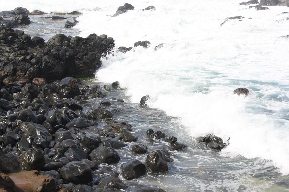 CJ Maui 3