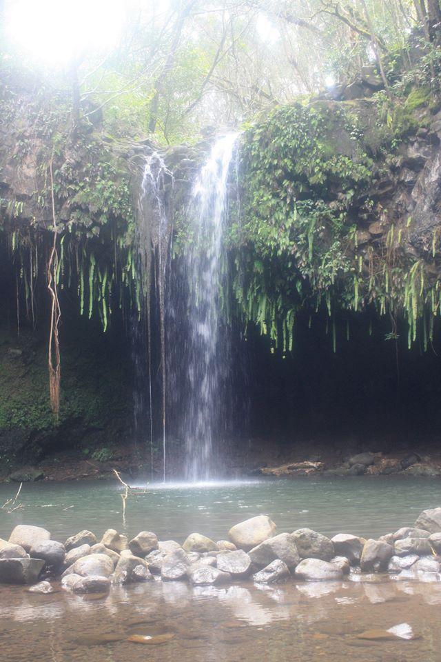 CJ Maui Twin Falls