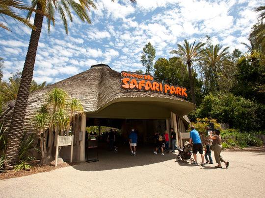 Discounted Admission To San Diego Zoo Safari Park