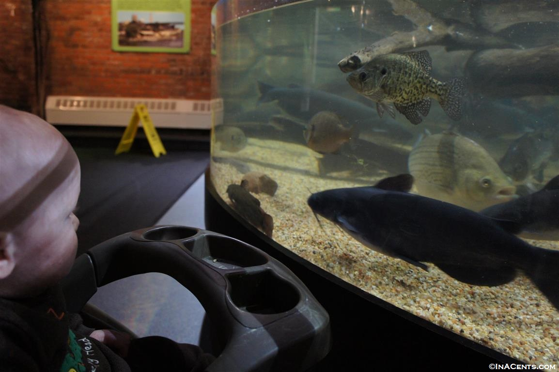 save 5 on greater cleveland aquarium tickets in may