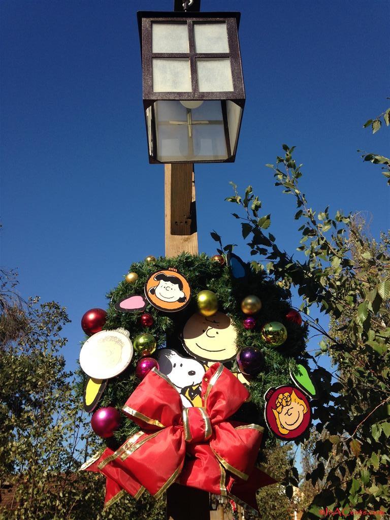 141125 Knott's Merry Farm (8)