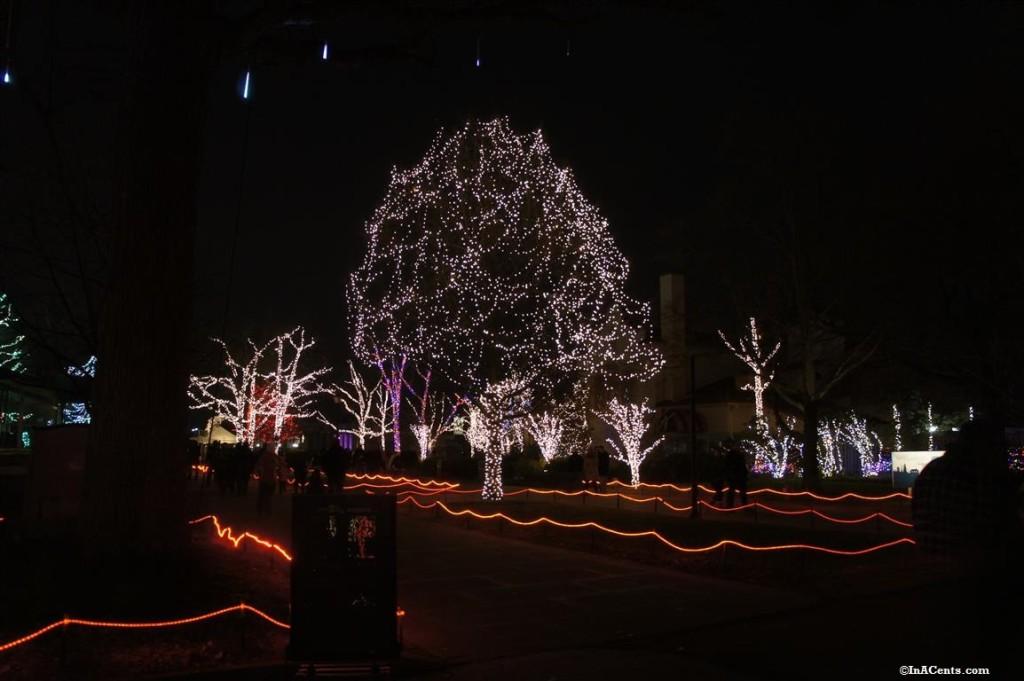Toledo Zoo Lights Revisited