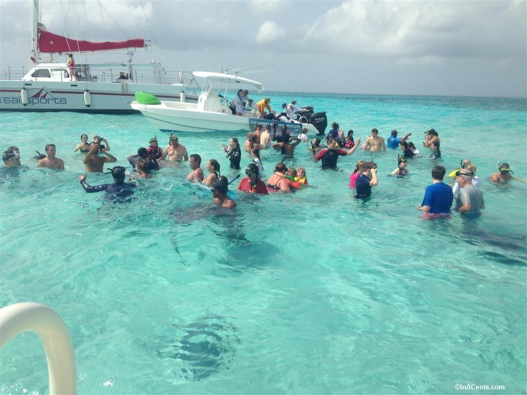 150704 Stingray City, Grand Cayman with Kids