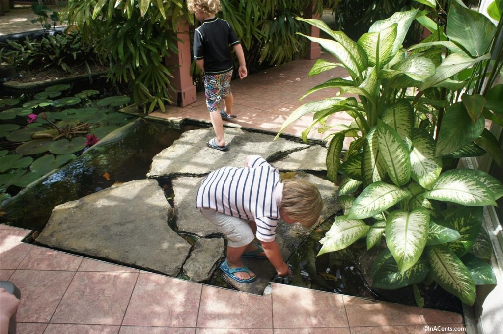 150705 Queen Elizabeth Botanical Gardens, Grand Cayman with Kids