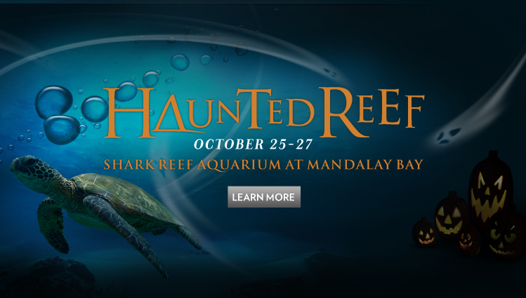 Free Admission To Shark Reef Aquarium At Mandalay Bay With